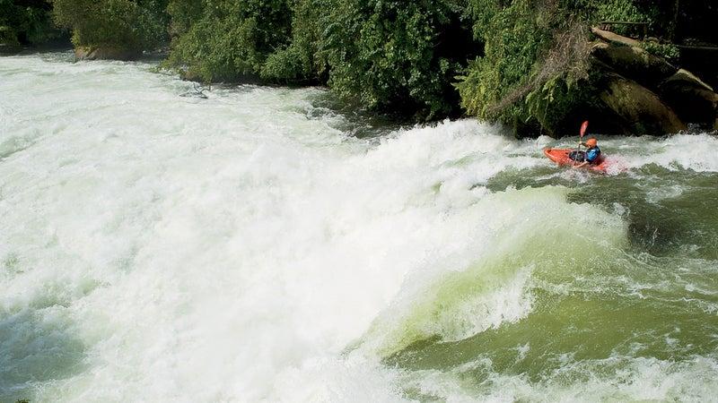 Coetzee on the Nile in October.