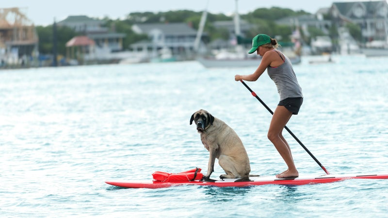 A woman and her dog paddling near Wrightsville Beach.