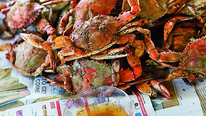 Chesapeake Bay crabs in Cape Charles.