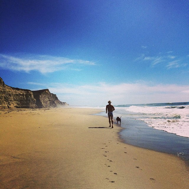 @sfultz1: Beach day with Ty. She loved running and playing in the water. Good day. #newdog