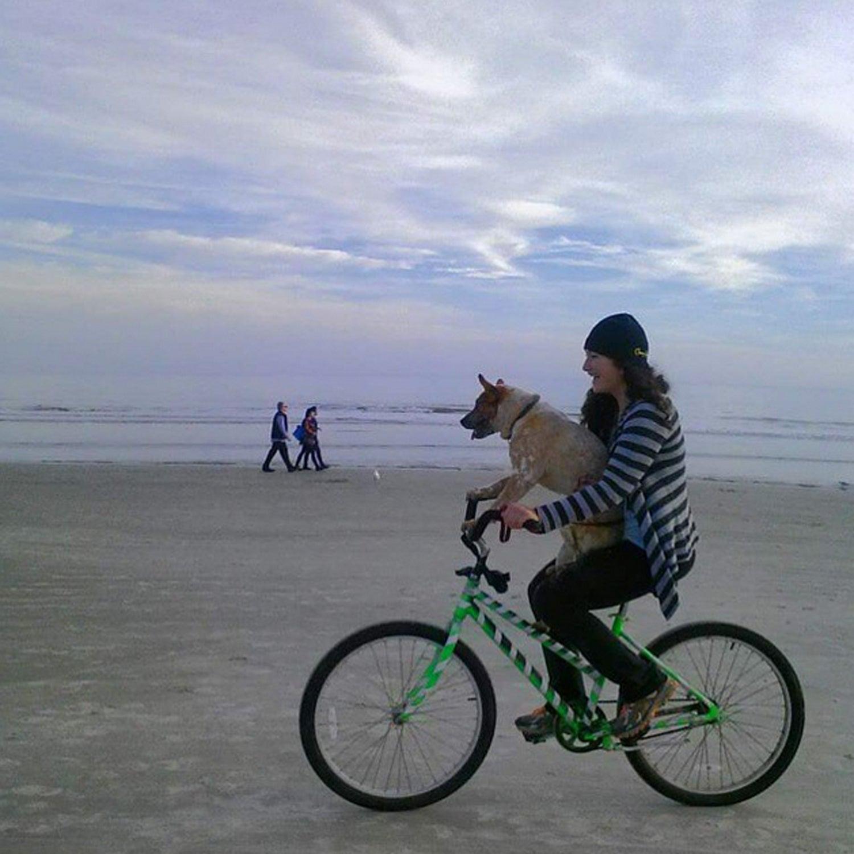 South Forest Beach, where dogs ride bikes too!! #BestTowns2015 #hiltonheadsc #redheeler #carolinaacdrescueandrebound