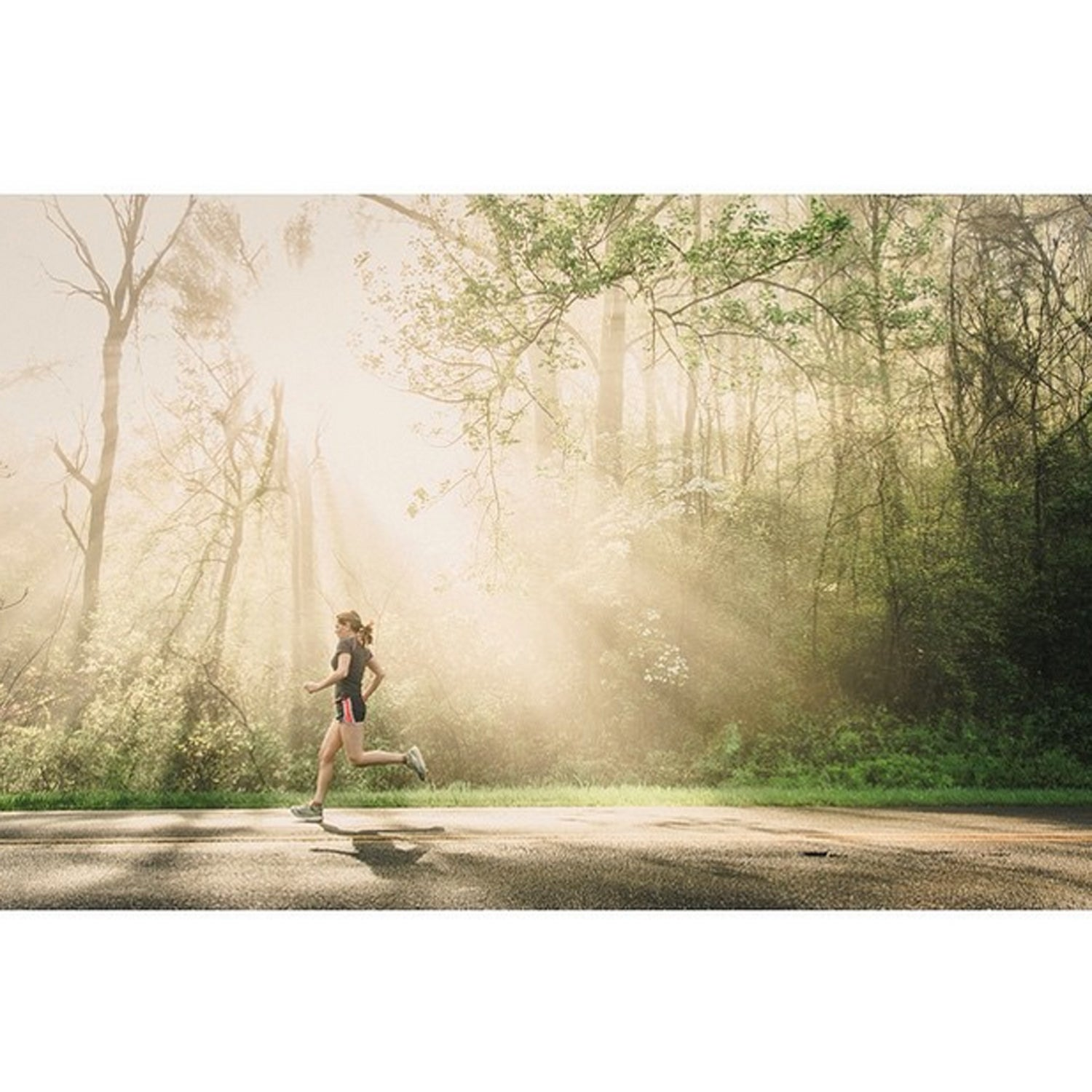 Sometimes spontaneity can trump all of your planning. Luckily my beautiful wife was willing to do some quick running modeling on the #blueridgeparkway this morning just as the sunlight was starting to burn off the morning mist.