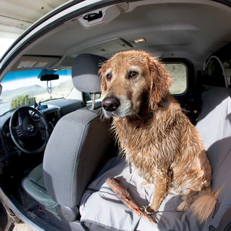 My dog, Booter, loves to get as dirty as possible. So the RuffWear Dirt Bag seat cover is an essential piece of equipment for any adventure: Booter can still have fun, and my truck isn't absolutely destroyed. Win!