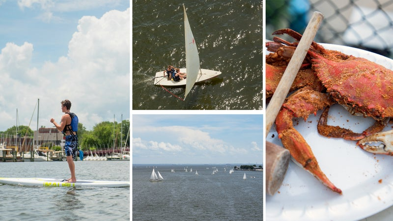 Clockwise from left: SUP session; full sail in Annapolis harbor; Maryland blue crab; Chesapeake Bay rush hour.