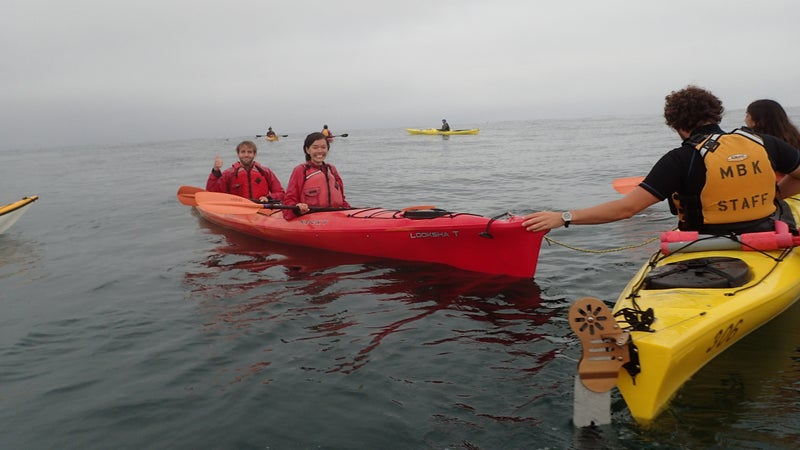 Tom Mustill and Charlotte Kinloch safe and sound after a humpback whale landed on their kayak.