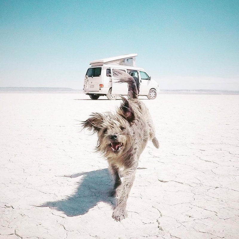 @alisontravels: Then we land on the moon...#vanlife #maxtravels