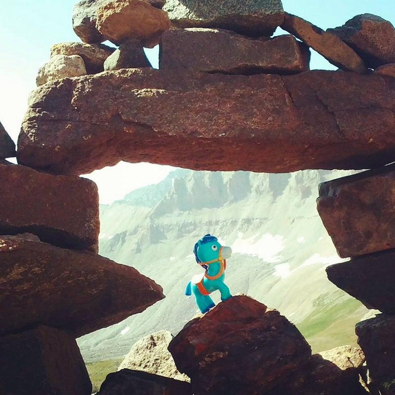"""@alix_vagabond: Sparky took his first major#mountain fall yesterday...posing for this picture. """"Sparkkkyyyy...NOOOOOO!"""" I cried aloud as I chased after him, then I held him in my arms till he regained consciousness. He's ok now. Don't worry!"""