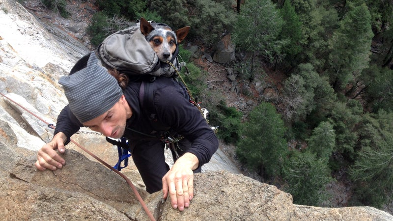 Dean climbing up Leaning Tower in Yosemite with Whisper. (Photo by Graham Hunt)