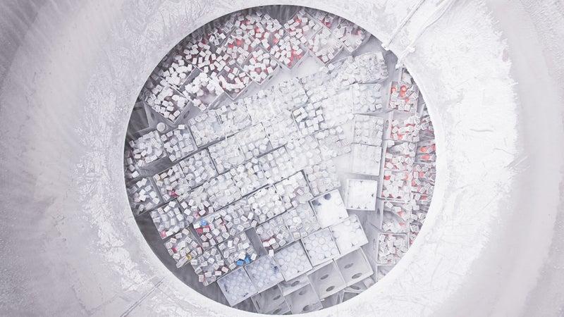 Frozen sperm samples at a cryobank.
