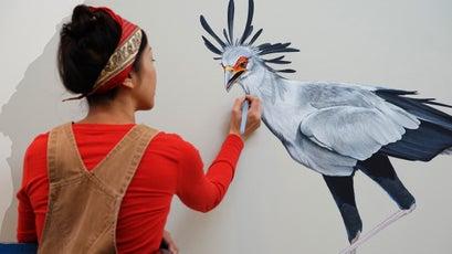 Painting a secretarybird.