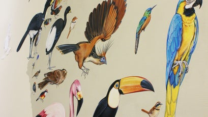 Detail from the Wall of Birds.