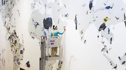 Working on the Wall of Birds.