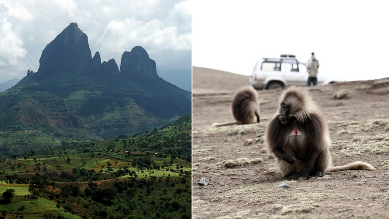 From left: Simien Mountains; Gelada monkey in Simien National Park.
