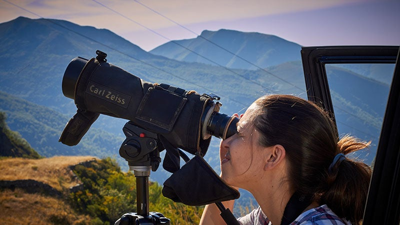 Spotting scopes offer much greater magnification, at the expense of portability, and require a tripod or similar stand/mount for stabilization.