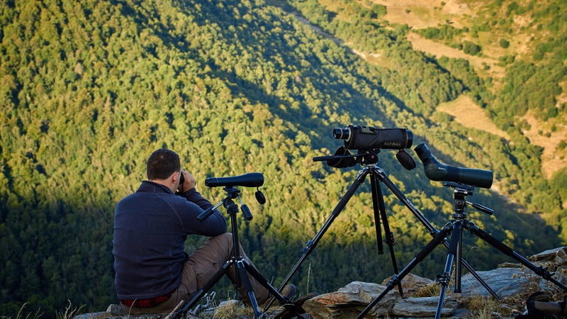 Binoculars and spotting scopes are essential for spotting wildlife. Learn more about them here.