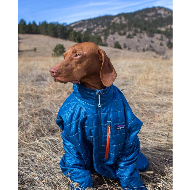 @Campbellview: When you're tired after a long day of hiking and it's cold but dad forgot your jacket...