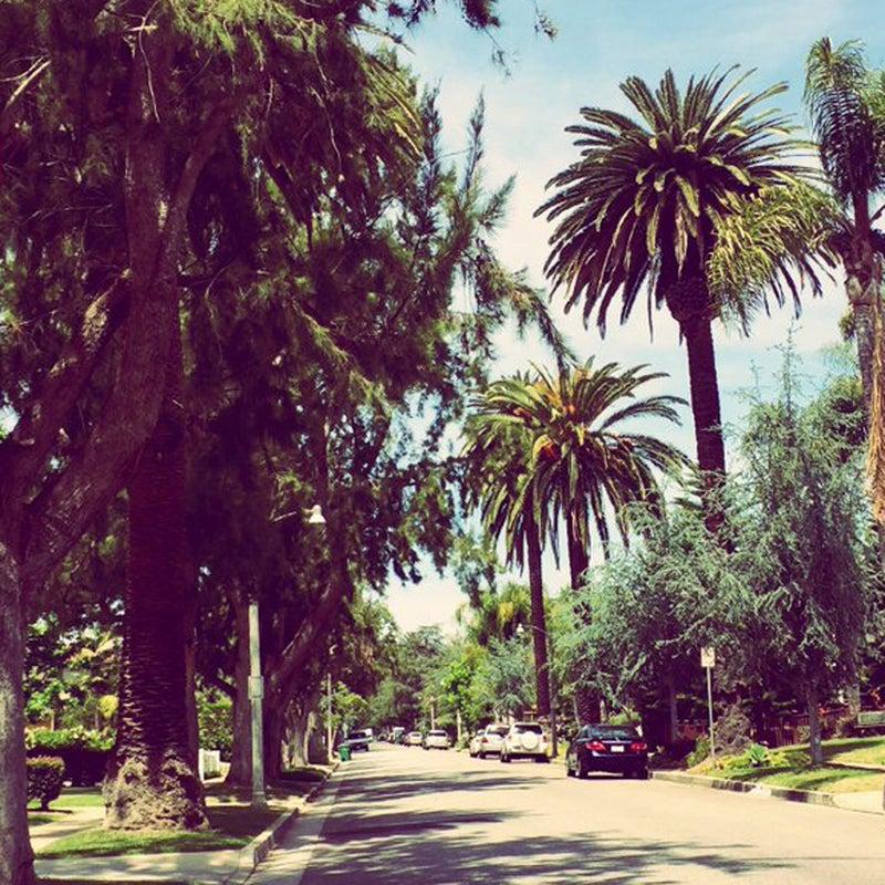"""""""Love running in the quiet neighborhoods of LA during my lunch break #Saucony #SoultoSole"""""""