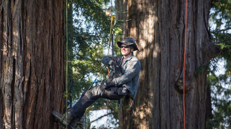 Tim Kovar is the founder and owner of Tree Climbing Planet, which runs recreational courses on a 150-acre forested farm near Portland, Oregon.