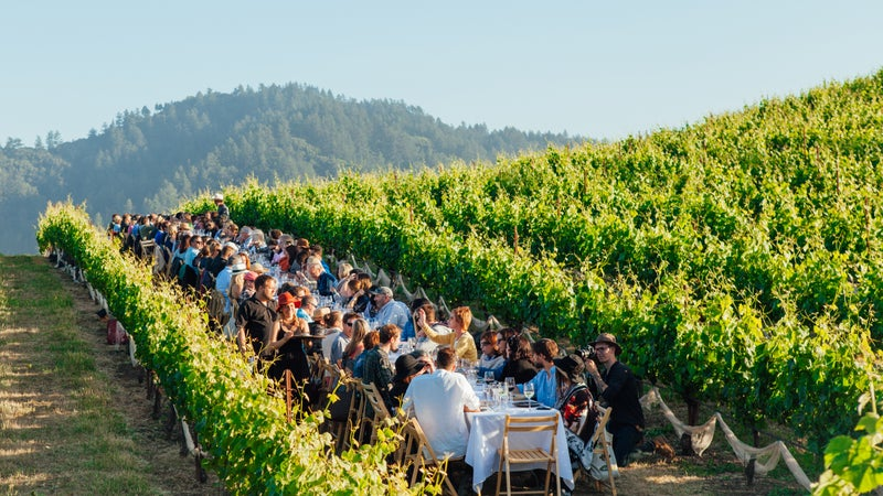 Can't beat dinner in a vineyard.