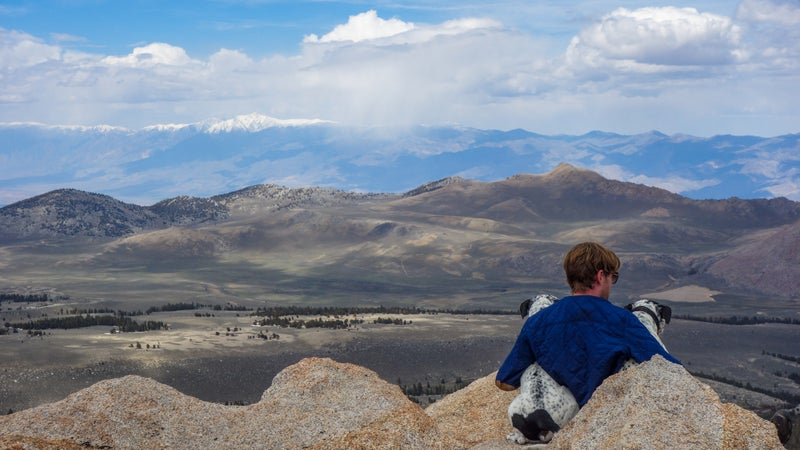 John and dogs look out over Coyote Flat from a nearby peak, White Mountains in the distance.