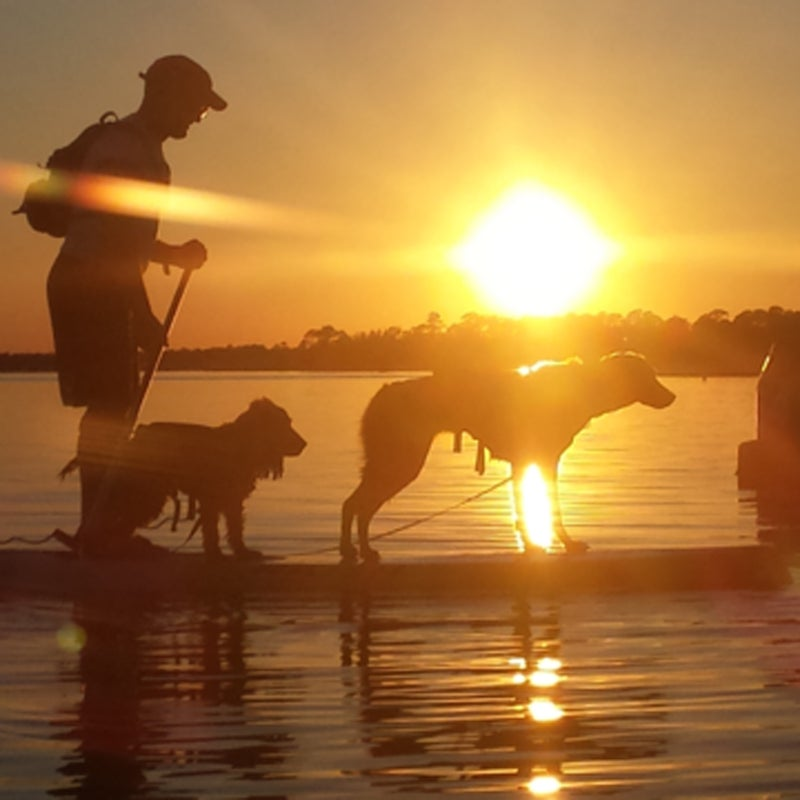 """""""Paddleboard on the Santa Rosa Sound at Sunset with two dogs."""""""