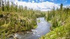 Can a Montana Recreation Waterway save the Yellowstone?