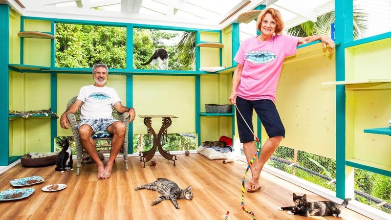 """Basil and Sue Scott in their newly built """"cat-zebo."""""""