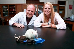 """Neuroscience Professor Joseph Schroeder and Lauren Cameron '14 found that eating Oreos activated more neurons in the brain's """"pleasure center"""" than exposure to drugs of abuse."""