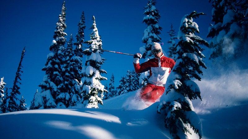 Skier riding through powder, Whistler, British Columbia, Canada, low angle view