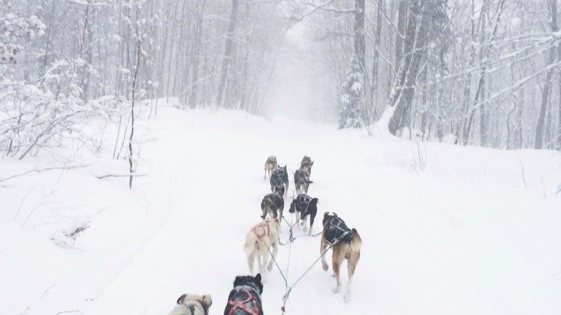 A 10-dog training run over Brockway Mountain in Michigan's Keweenaw Peninsula.