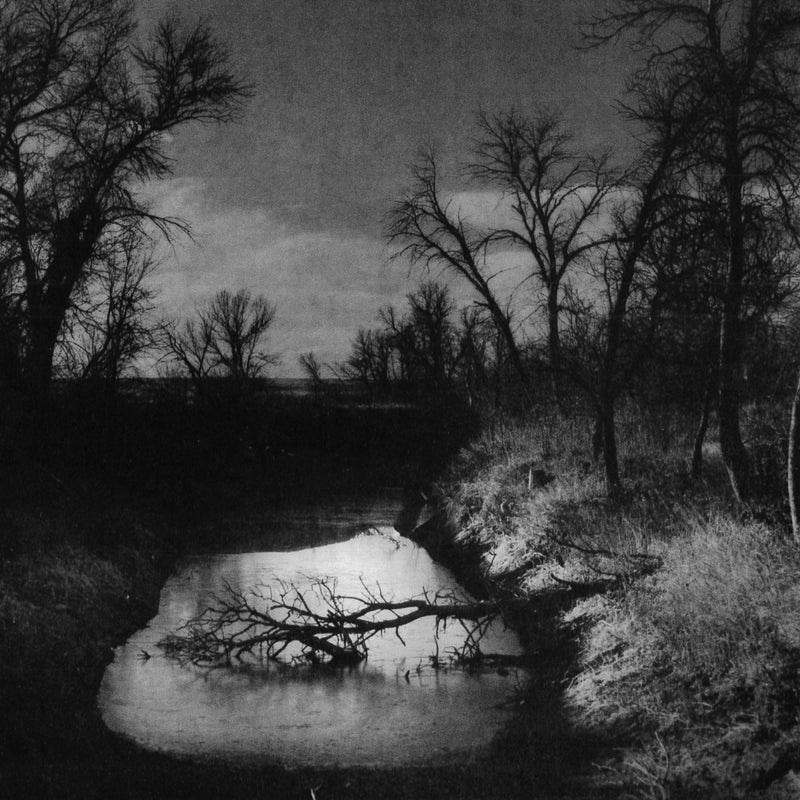 Twilight at Pine Ridge.
