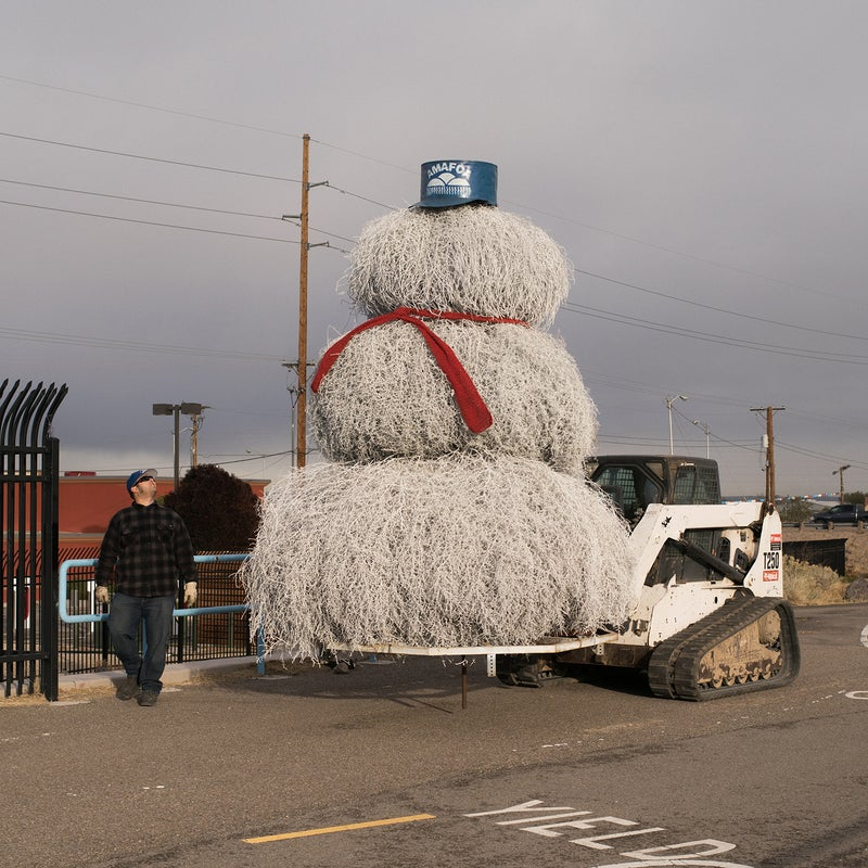 Another holiday tumbleweed tradition: the Albuquerque Metropolitan Arroyo Flood Control (AMAFCA) tumbleweed snowman in Albuquerque. AMAFCA is an organization that encounters big tumbleweeds growing every year in and around Albuquerque's waterways. They collect three of the largest tumbleweeds they can find each November, build a giant snowman, and stick him out next to the highway.