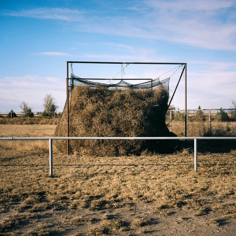 Eads, Colorado, was another town that got hit by a big storm recently. I couldn't make it until a few days after the storm, but when I did, this batting cage was one of the things I found. It must have been open, and when the tumbleweeds blew through they just filled up the netting.