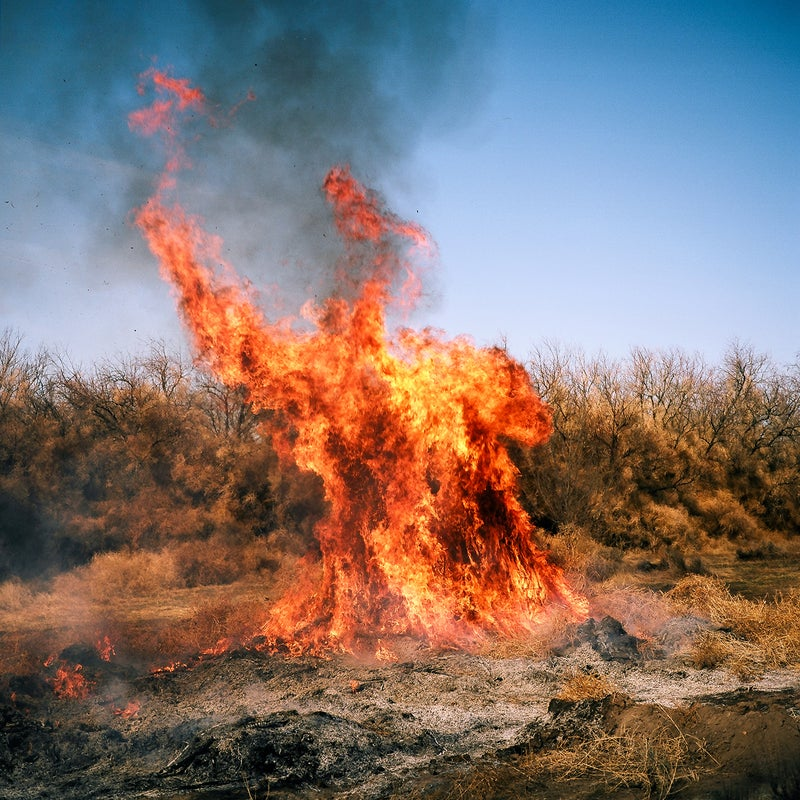 From what I've seen, burning tumbleweeds may be the best way to get rid of them. Though it's less effective if they've piled up next to your house.
