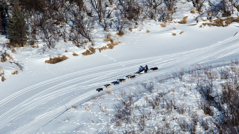 An aerial view of a sled dog team