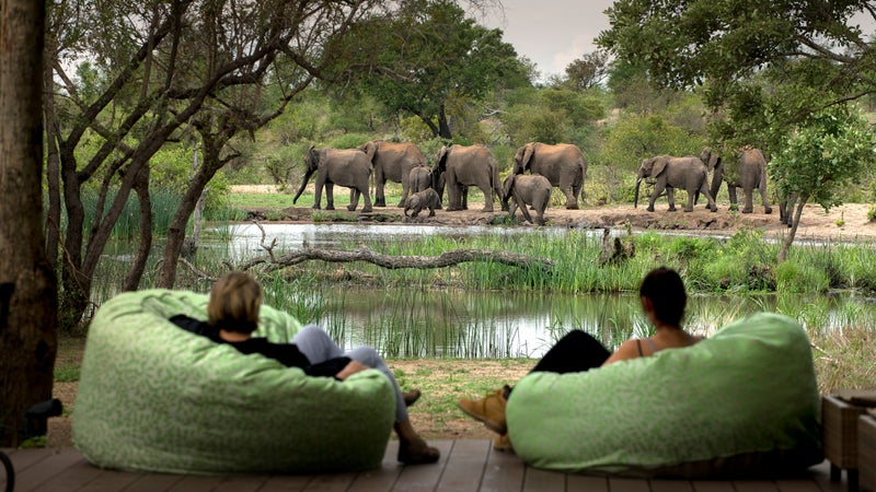 Watching elephants from camp Tanda Tula, Greater Kruger National Park.