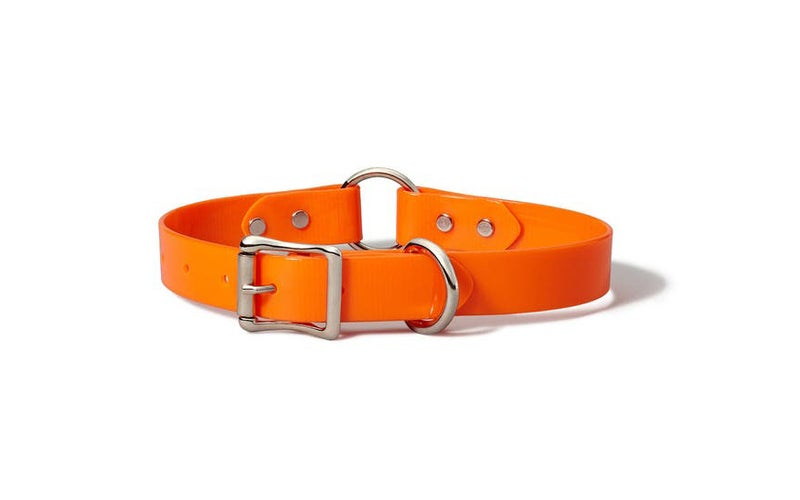 Filson Webbing dog collar.