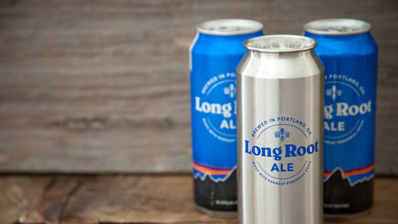 Patagonia Long Root ale.