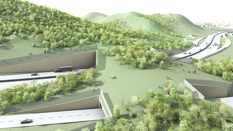 The Liberty Canyon Wildlife Corridor—a green space that spans 10 lanes over Highway 101—is one of the country's fiercest conservation projects. It aims to allow animals to cross safely from the Simi Hills to the Santa Monica Mountains.