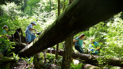 Members of the Breathitt County Hiking Club help one another over a large tree that fell on the hiking trail.
