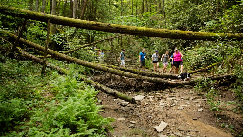 The Breathitt County Hiking Club embarks on a hike to the Copperas Creek Falls. The group's members range in age from 14 to 74.