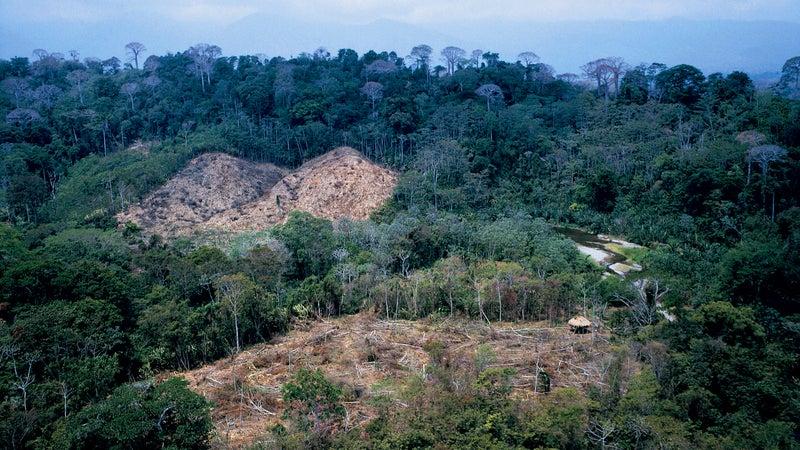 Clear-cuts near Boca de Cupe, a village in Darién National Park