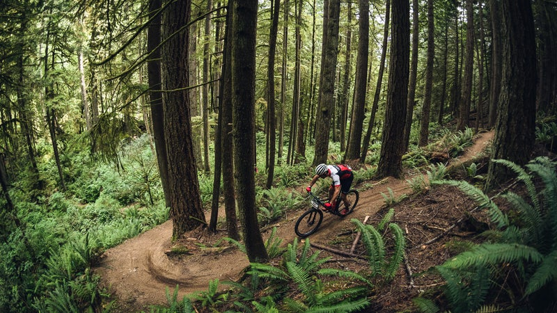 Some of the best singletrack in the world is in British Columbia.