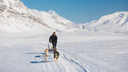 Man drives a dog team on Anaktuvuk Pass, Brooks Range, Alaska.