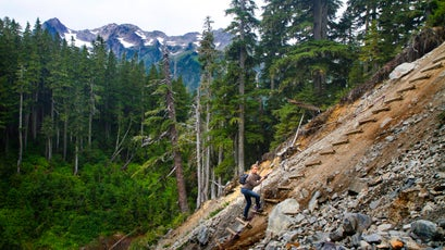 """After a portion of trail washed out, a """"ladder"""" was put in place for hikers to continue on the Hoh River trail."""