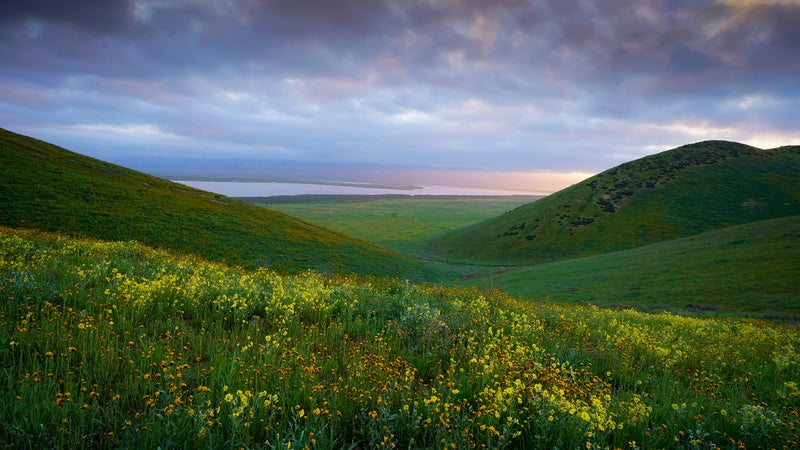 Carrizzo Plain National Monument is among those still up for review.
