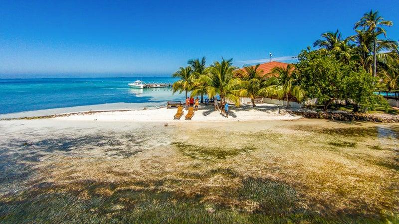 Hatchet Caye Island