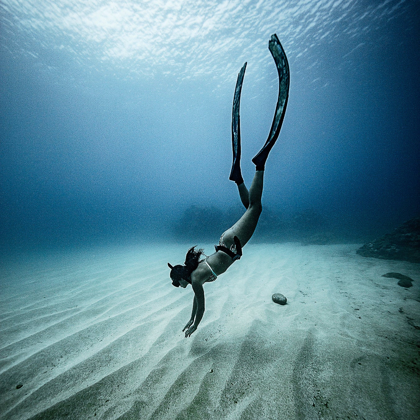"""Werner diving off Oahu. """"I've never had a five-year plan,"""" she says. """"Or even a one-year plan."""""""