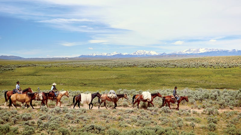Approaching the Continental Divide, with the Wind River Range on the horizon and Quirt Rice leading the pack.