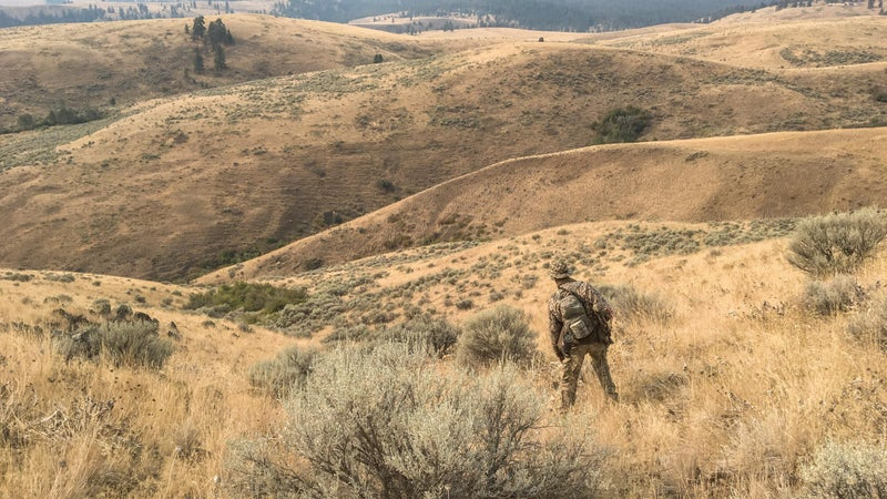 Each day, the elk would return from the river lowlands to bedding grounds in the dense brush of higher-elevation valleys. Learning those movements and finding natural funnels that create ambush opportunities were the keys to successfully hunting such wary game in open country like this. But it was teamwork that made the hunt possible.